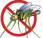 MOSQUITO CLEAR Barrier Spray